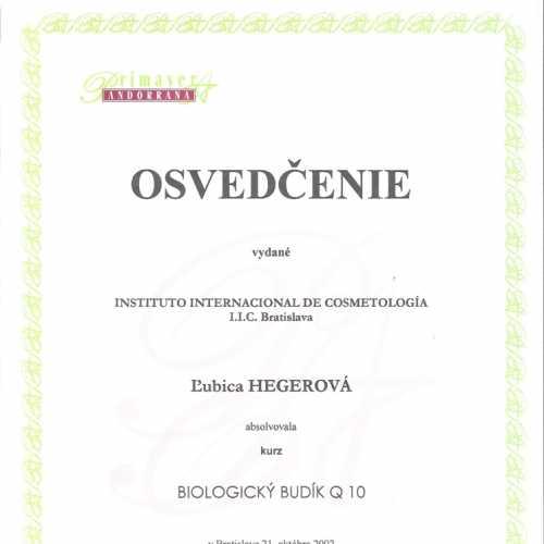 certifikat9.jpg